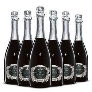Confezione 6 bottiglie Prosecco Docg Extra Dry – Canella